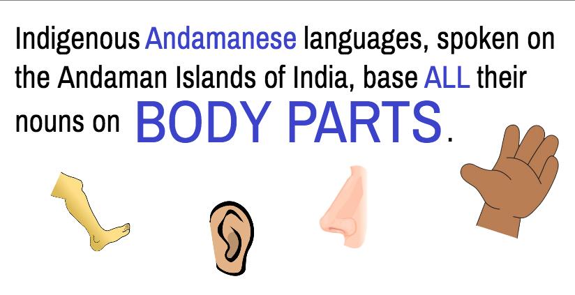 Language facts image3_1